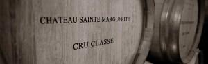le vin bio en provence